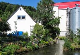 01 Buttenhausen (13)