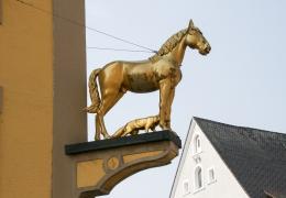 Ellwangen-8329
