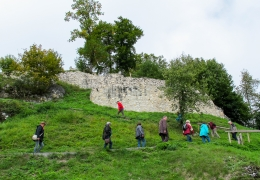 Geologie Donautal-13